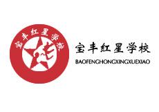 宝丰县红星学校校园直饮水设备